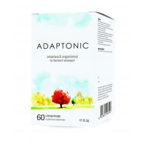 3d_cutie_adaptonic_nou