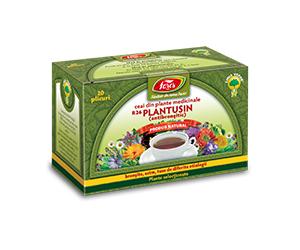 Ceai-Medicinal-Plantusin-3D-plic-logo